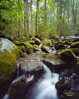 Smoky Mountain National Park, Cosby Creek, Waserfall
