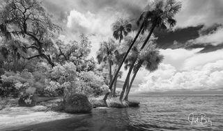 St. Vincent Island #2
