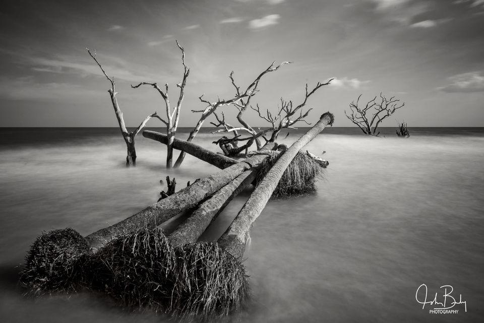 Botany Bay #3