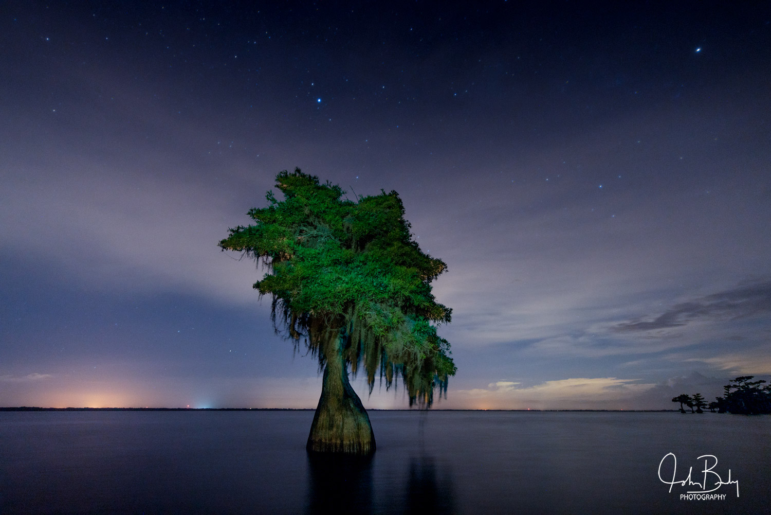 florida, swamps, lakes, creek, blue cypress, trees standing in water, stars,, photo