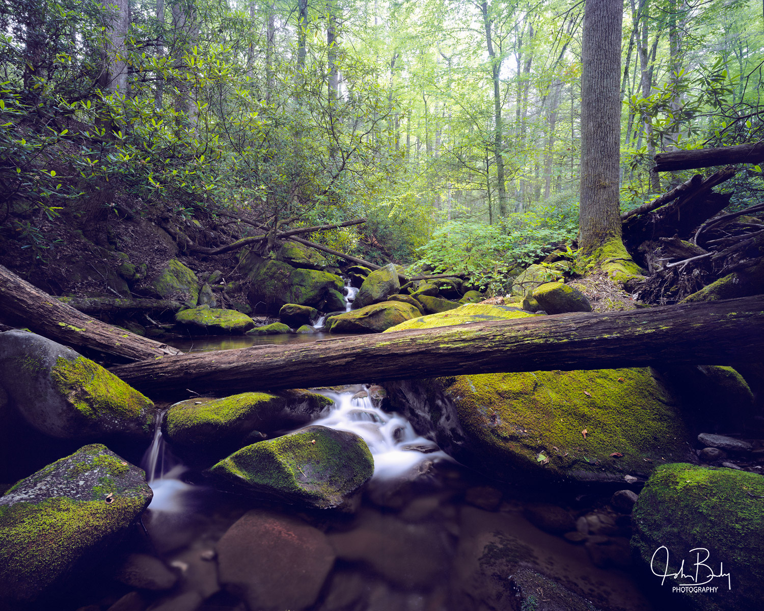 Cosby Creek is located in the Smoky Mountain National Park, Tennessee. This is an example of one of the many beautiful mountain...