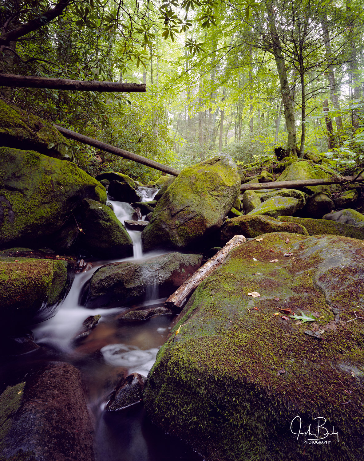 Smoky Mountain National Park, Cosby Creek, Waserfall, photo