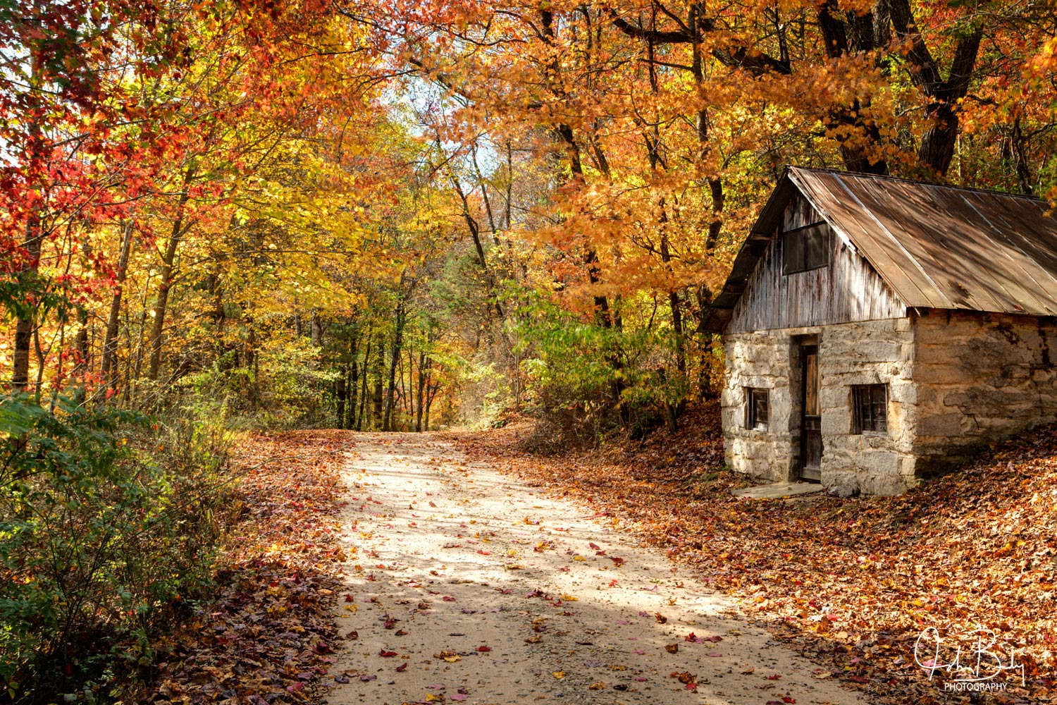 Blue Ridge Mountains, Fall Colors, Cabin, photo