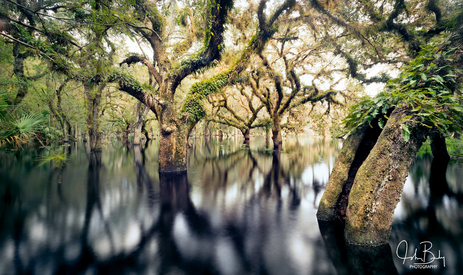 One of my favorite places to photograph is the Fisheating Creek The name comes from the translation of an Indian word that means...