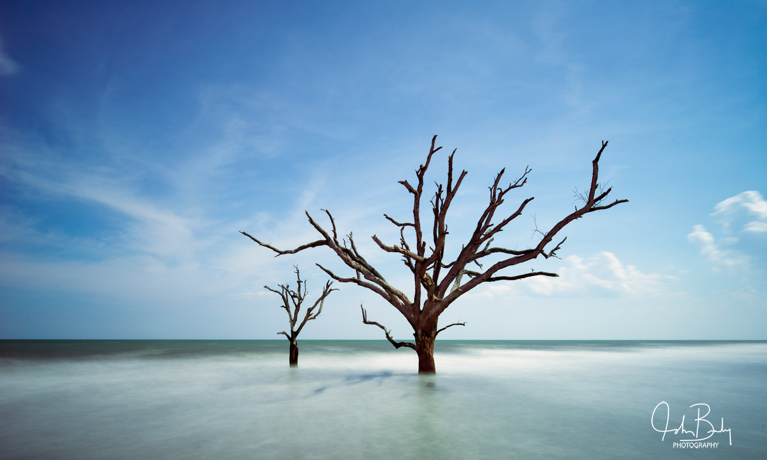 South Carolina, deist island, botany bay, oak trees standing in the ocean, abstract, photography, photo