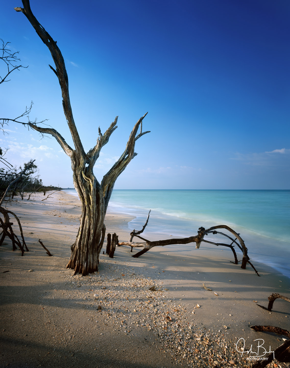 Cayo Costa is one of the Barrier islands protecting Florida's west coast. Because it is the first line of defense, it gets hammered...