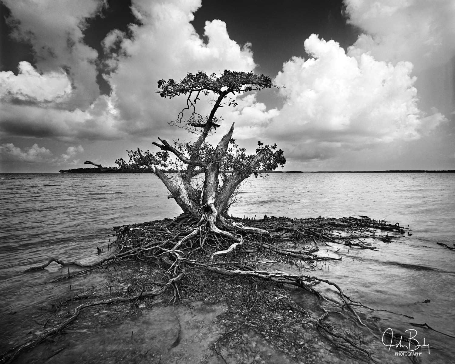 the ten thousand island national wildlife refuge, mangroves, everglades national park, jewel key, hog key, round key, turkey key, white horse key, rabbit key, demijohn key, dismal key, lost mans river, photo