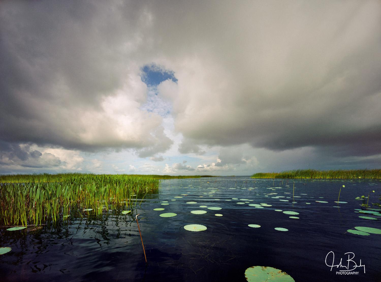 lake istokpoga, fog, cypress, swamp, florida, large format film photography, photo
