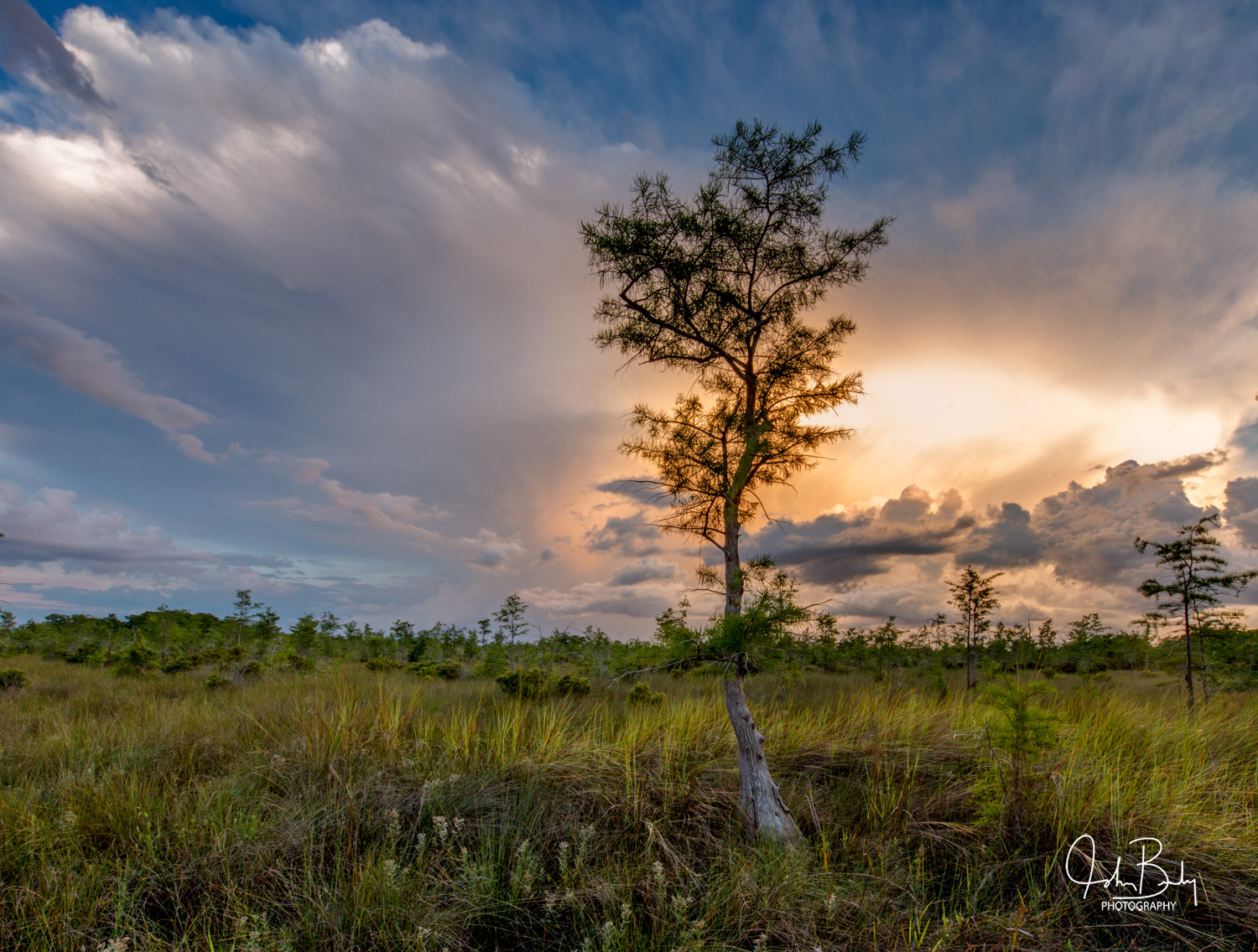 Located on the Western side of the Everglades, the 729,000-acre Big Cypress National Preserve is larger than the District of...